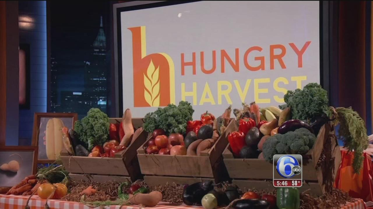 VIDEO: Hungry Harvest helps the needy by delivering discounted produce to your door