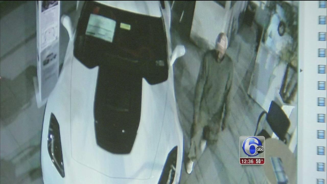VIDEO: Dealerships damaged in car theft attempt in SW Philly