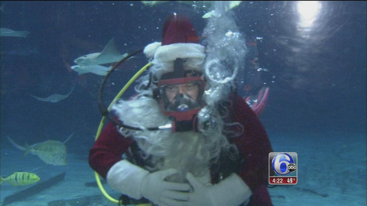 Scuba Santa at Adventure Aquarium
