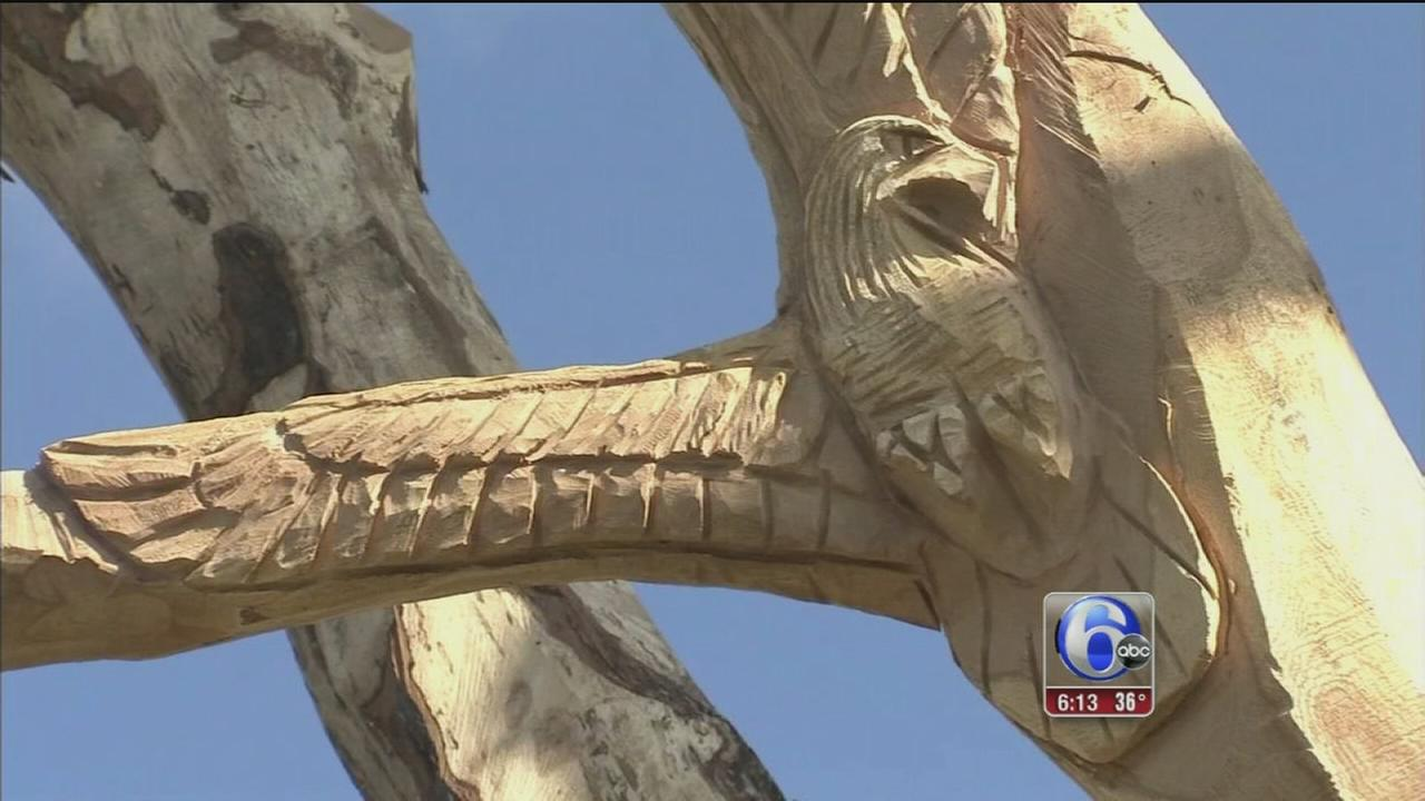 VIDEO: Communitys history, heritage carved into Oak tree