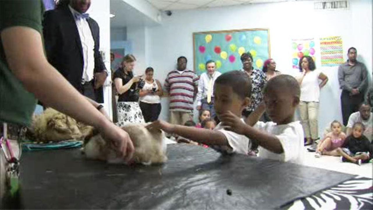 VIDEO: Phila. Zoo on Wheels visits children with special needs