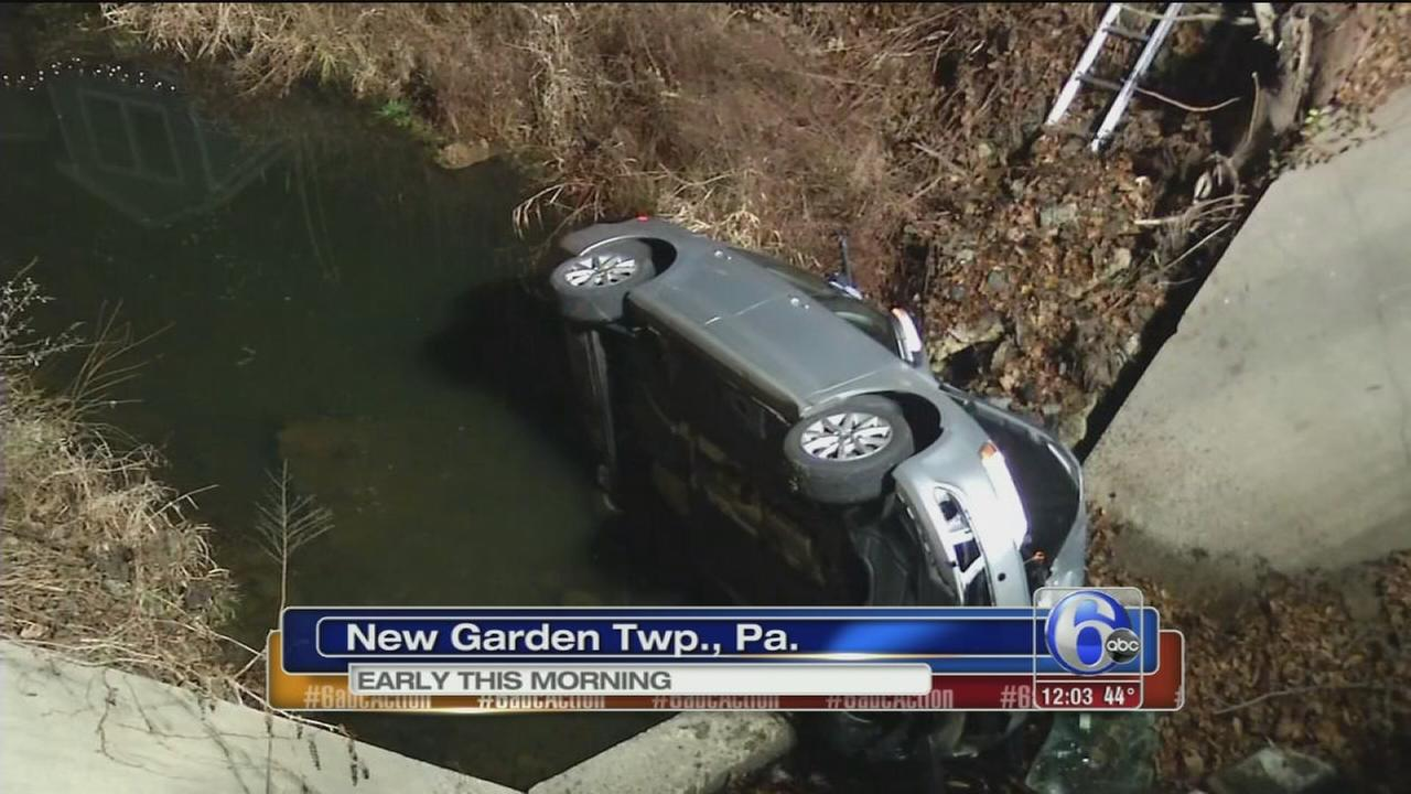Car plunges into lake in Chester Co.