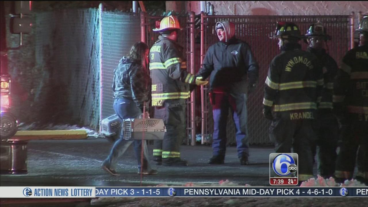 Employee rescues dozens of animals in Montco SPCA blaze