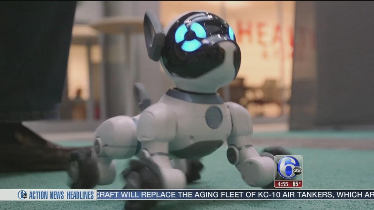 Consumer Reports texts best robotic toys for kids