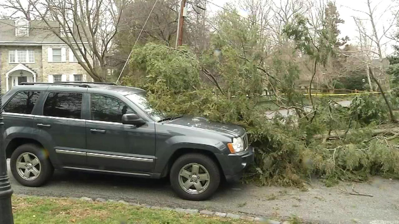 A tree fell on wires and an unoccupied vehicle on Grant Ave. in Wilmington on Monday, January 23.