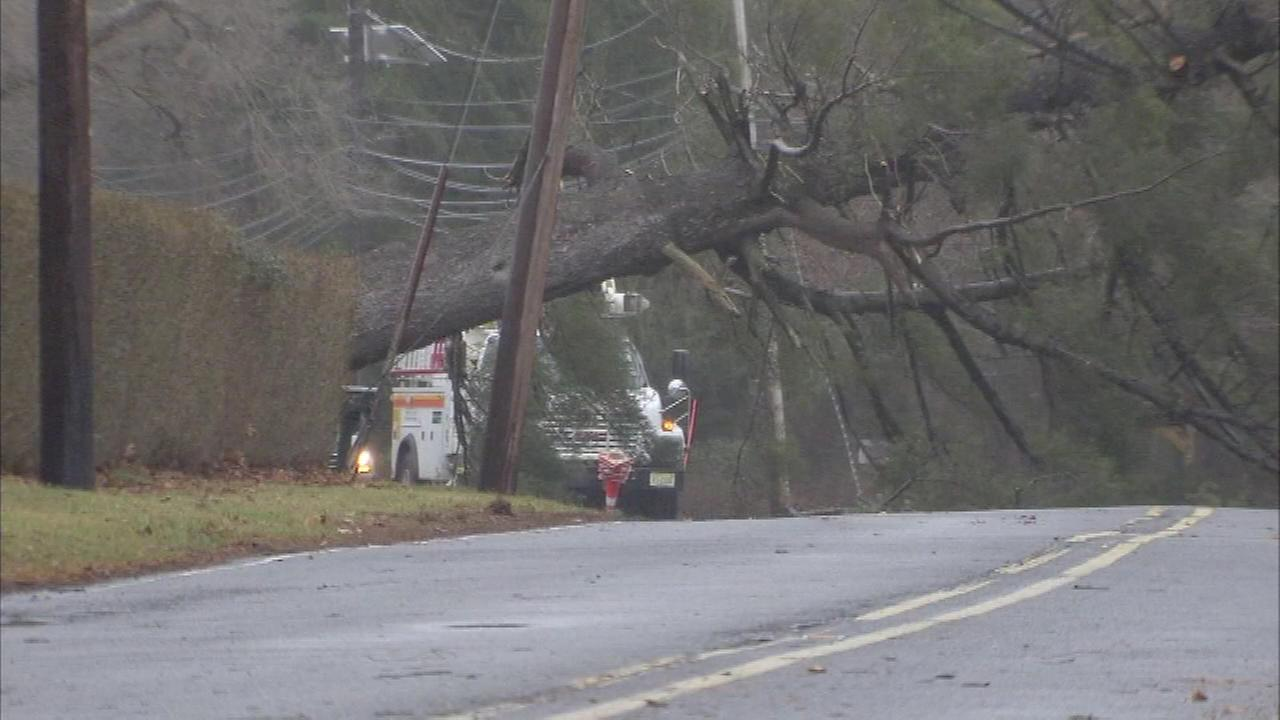A tree fell on wires in Robbinsville, New Jersey on January 23.