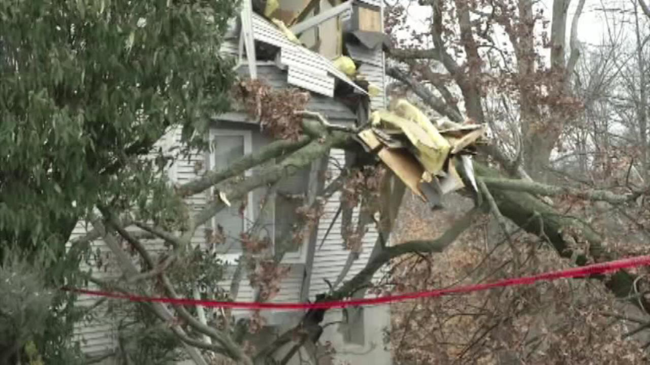 A tree fell on a house along Beatrice Lane in Aston, Pa. on January 23.