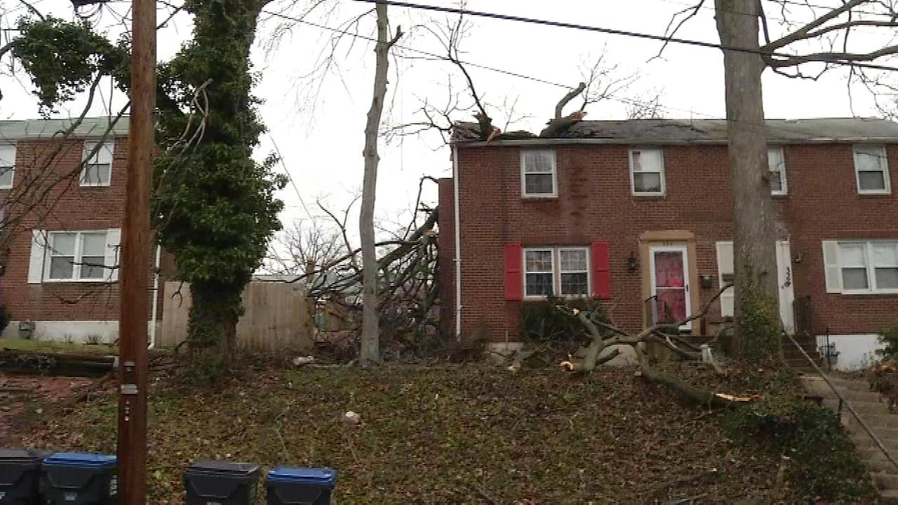 A tree fell on homes in the 300 block of Marsh Lane in New Castle County, Del. on Jan. 23.