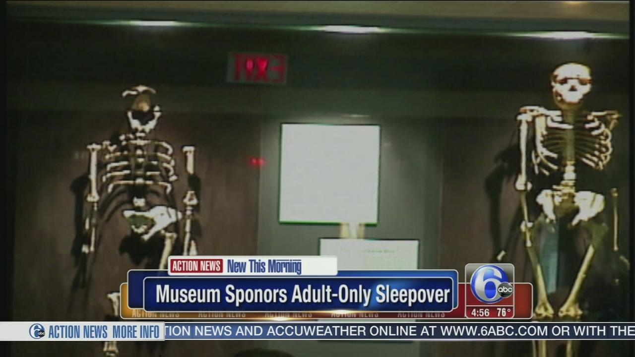 VIDEO: NY museum hosts adult-only sleepover