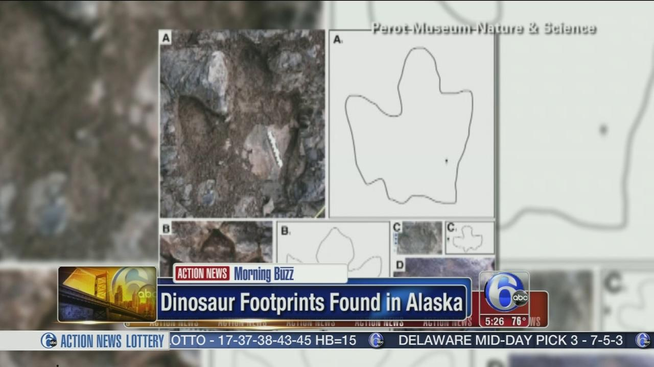VIDEO: Dinosaur footprrints found in Alaska