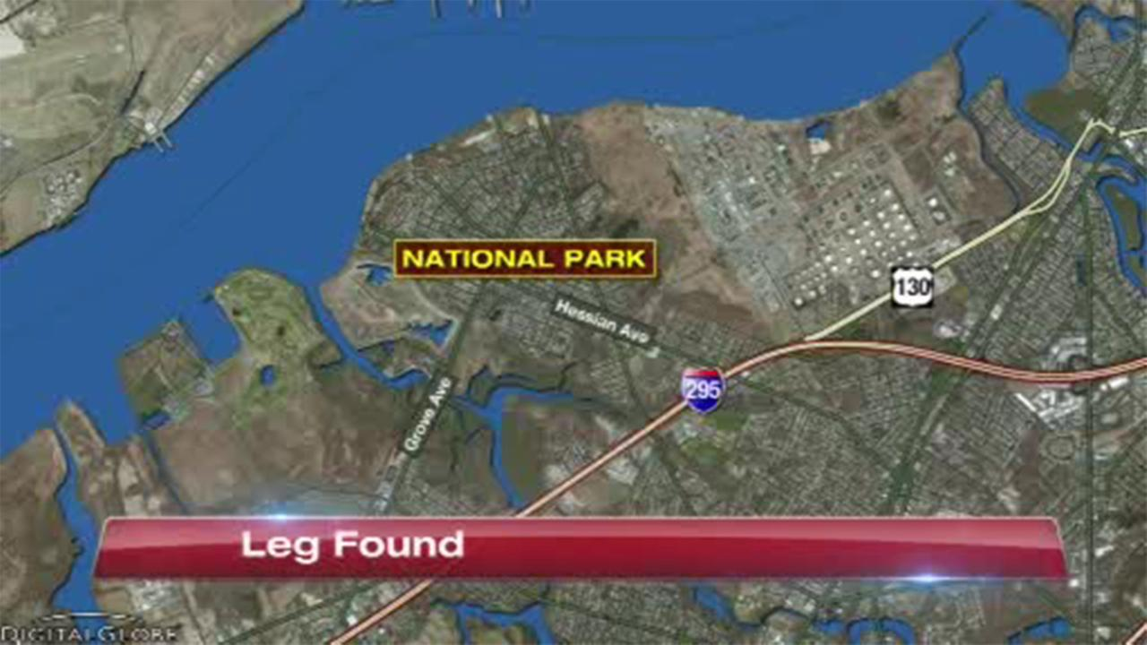 Police are investigating the discovery of a leg, which washed up Sunday in National Park, New Jersey.