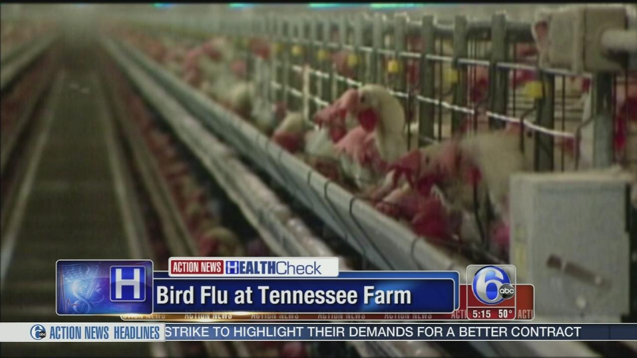 Bird flu found at Tyson Foods chicken supplier