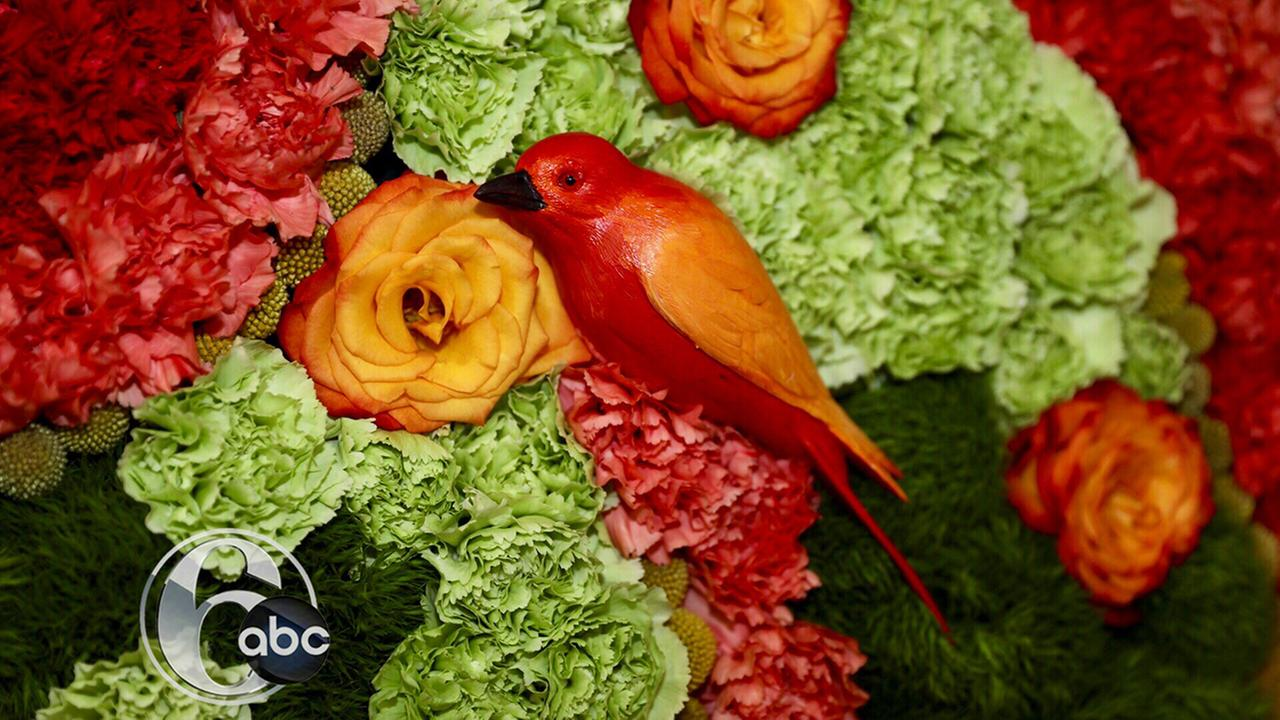 Philadelphia Flower Show 2017.Bob Watts