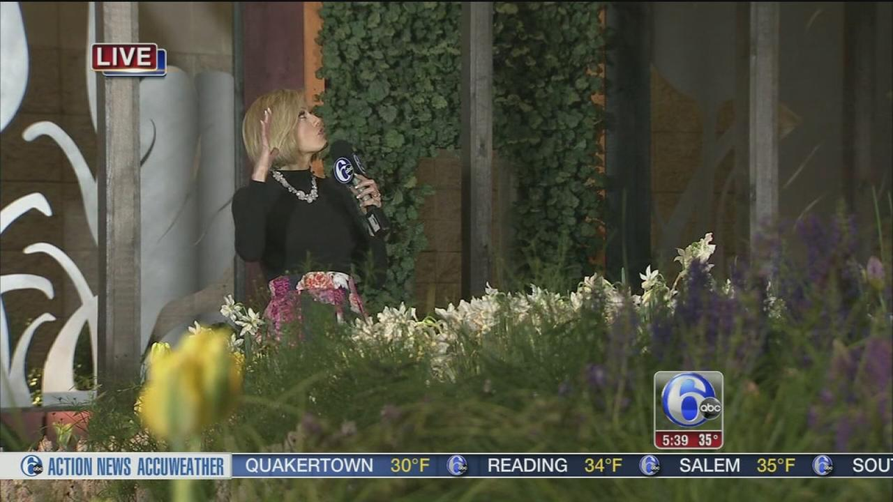 VIDEO: Cecily Tynan at Philadelphia Flower Show
