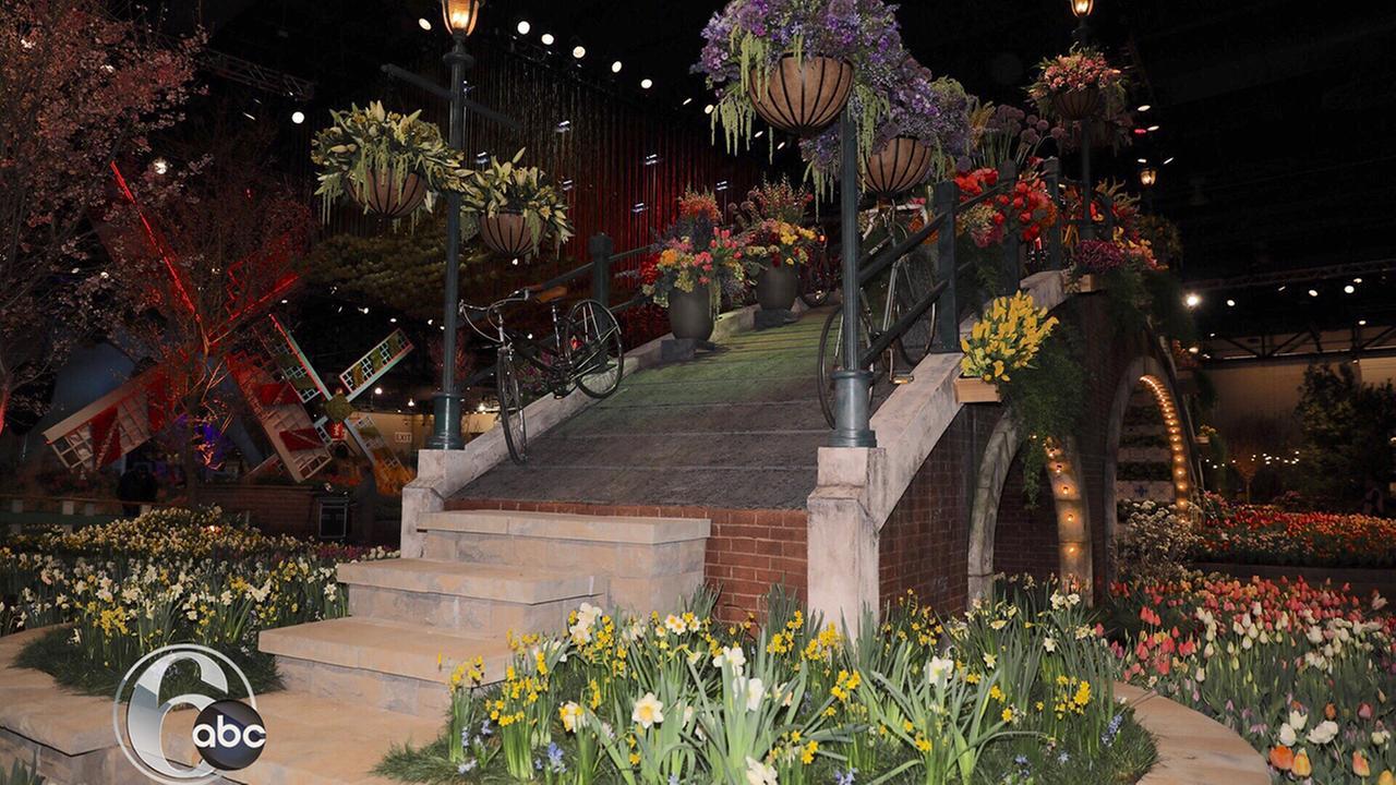 PHOTOS: Philadelphia Flower Show | 6abc.com