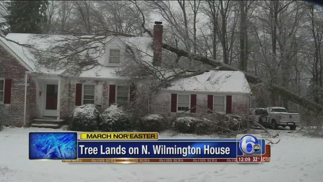 Tree topples on home in North Wilmington