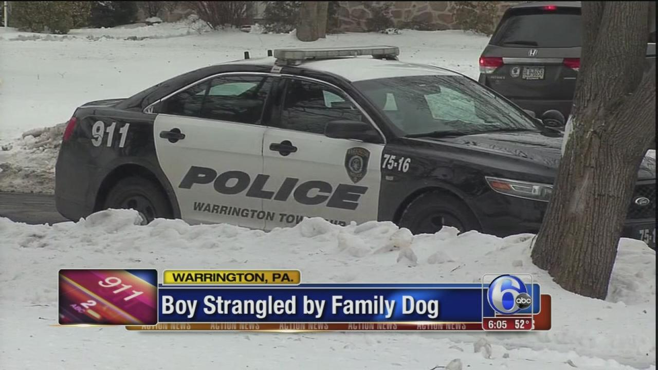 Boy choked by family dog dies