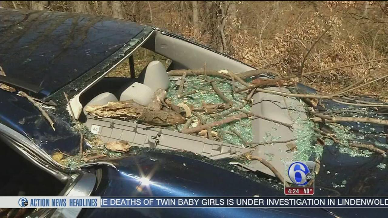 Tree comes crashing down on car in Claymont, Del.