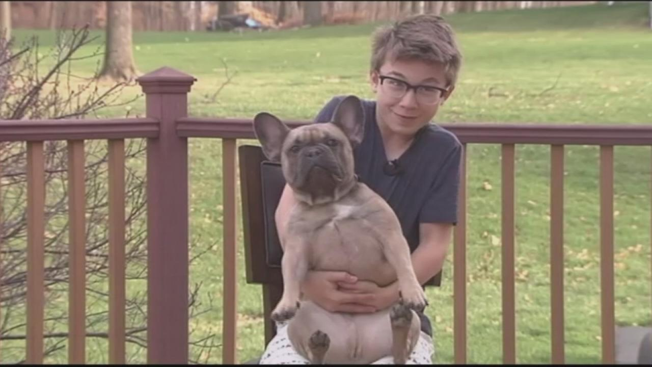 Pa. boy taught to do Heimlich on dog saves classmate