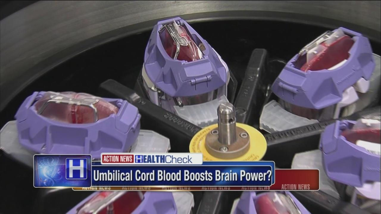 Umbilical cord blood could boost brain power