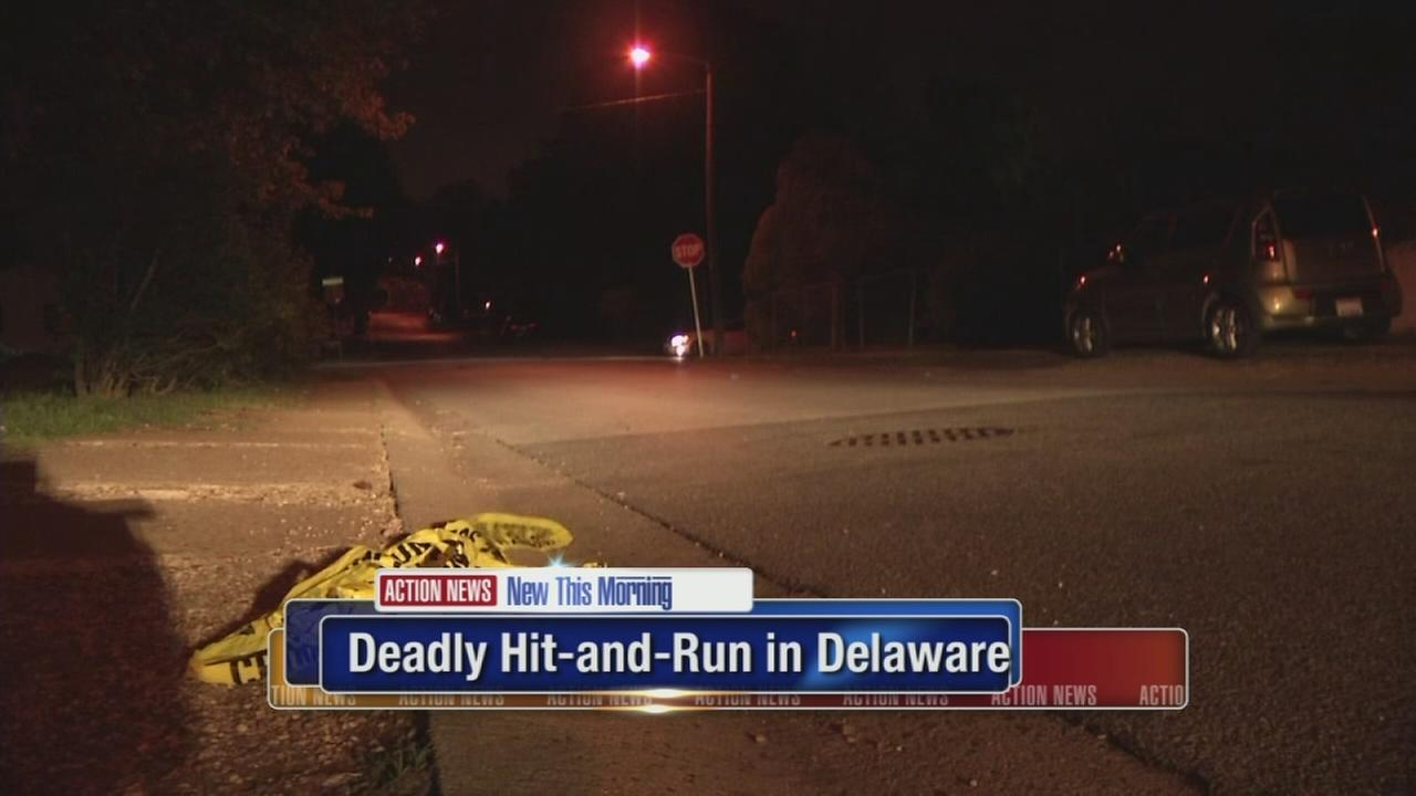 Deadly hit-and-run in Delaware
