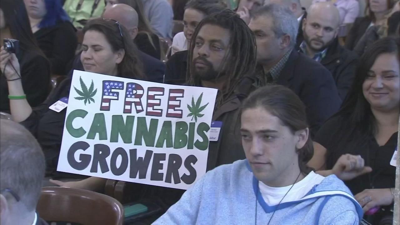 Recreational marijuana would be legal in NJ under new bill