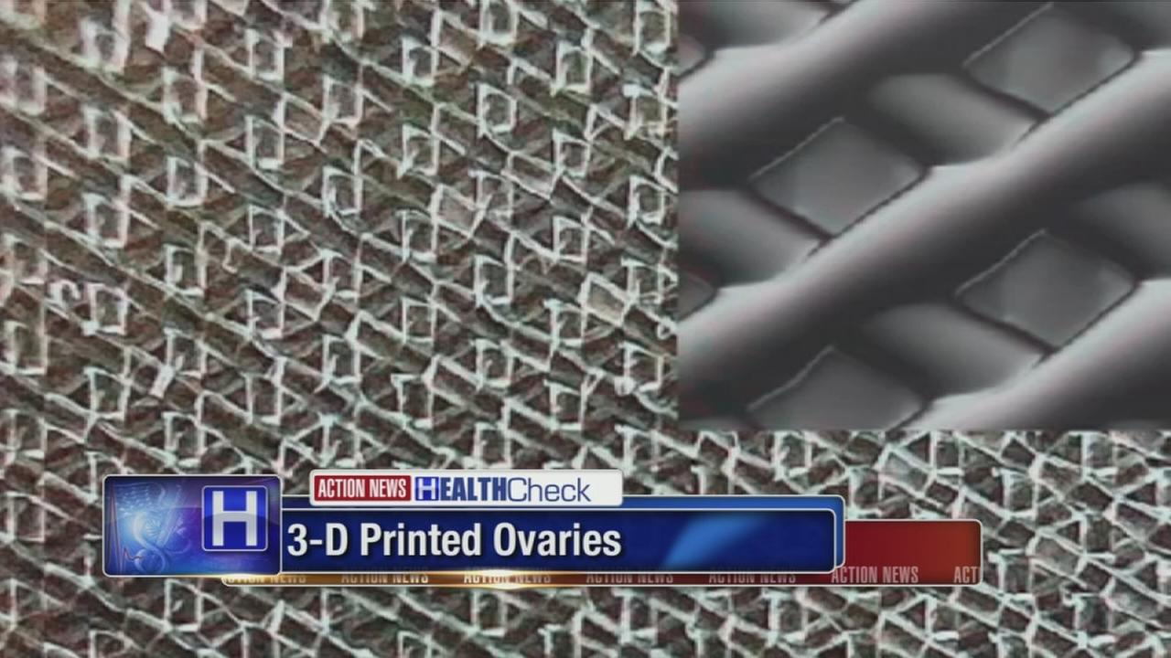 3-D printed ovaries restore fertility to mice, may be big step for women