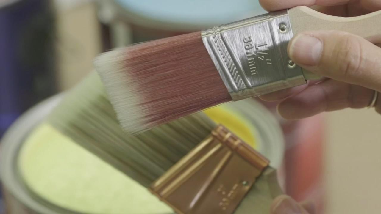 Consumer Reports: Are more expensive paint brushes worth it?