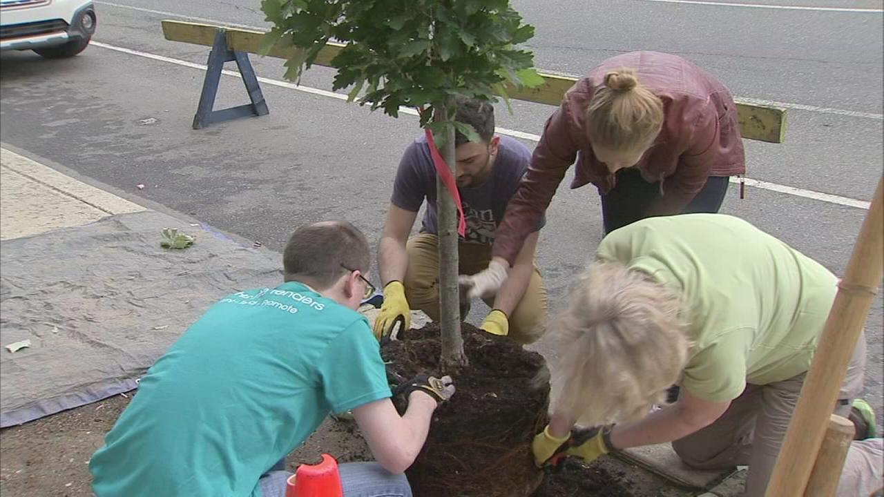 PA. Horticulture Society plants new trees