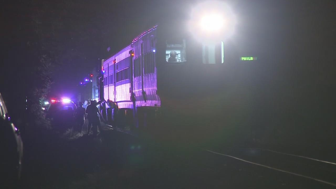 Person struck and killed