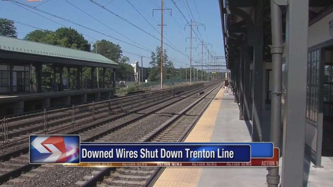 Downed wires shut down Trenton Line