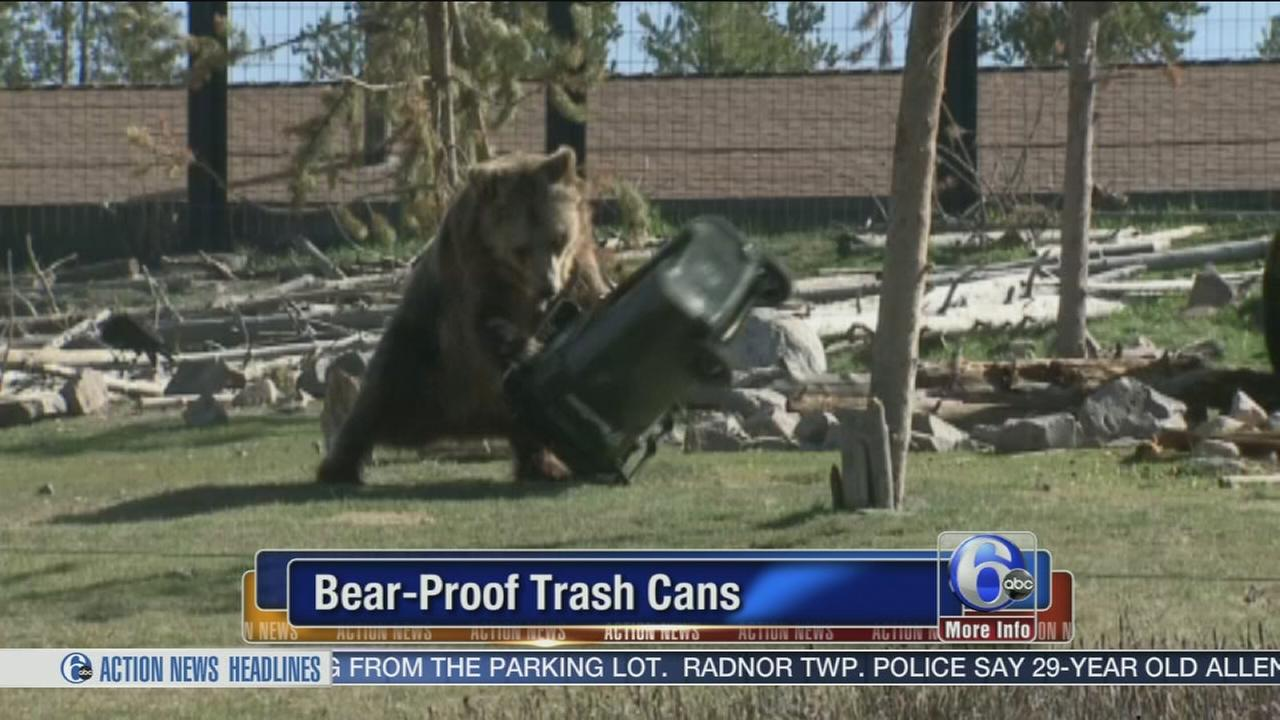 VIDEO: Frustrated bears cant open trash can