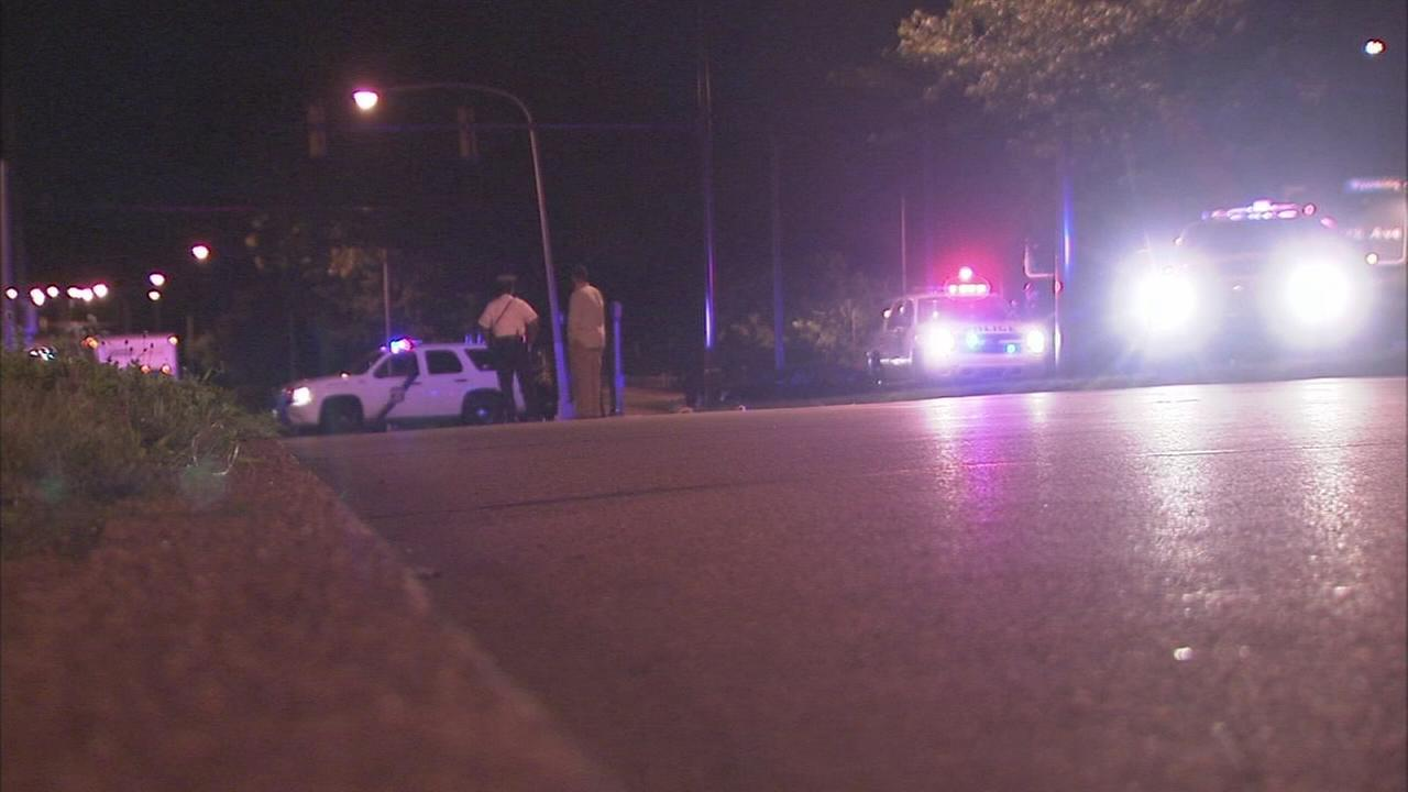 Man struck, killed on Boulevard