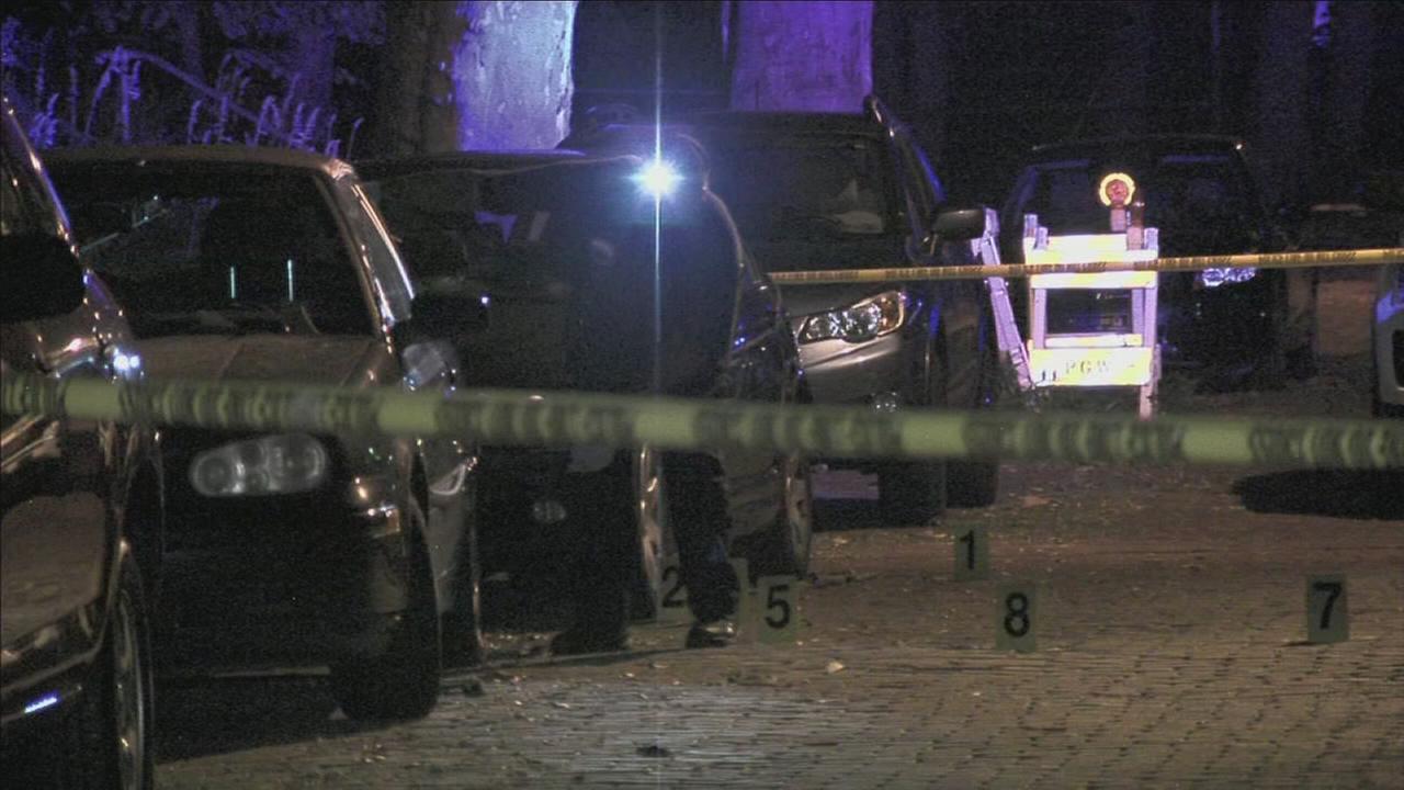 Victim ambushed and shot