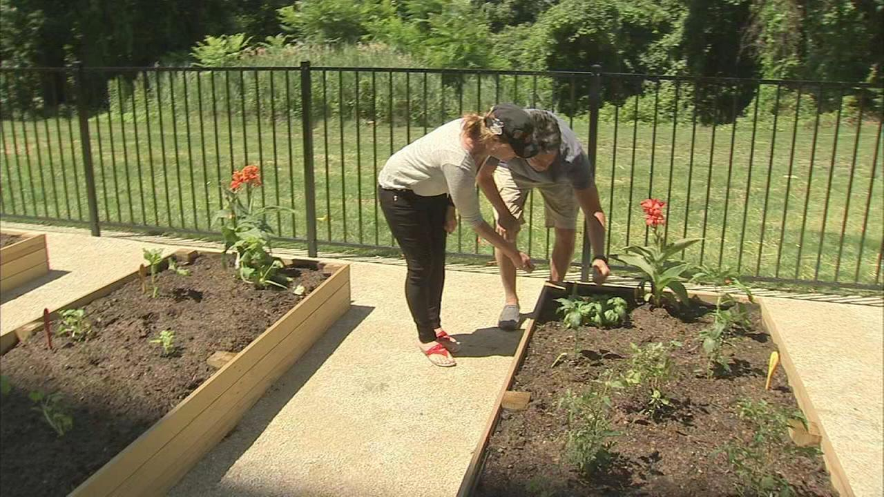 Community garden in Montco apartment complex