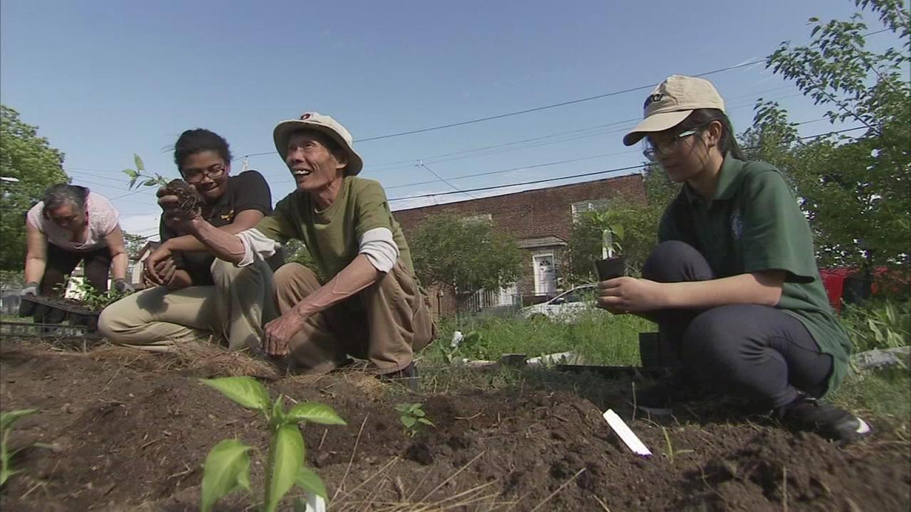 Art of Aging: Viet Lead Vietnamese garden