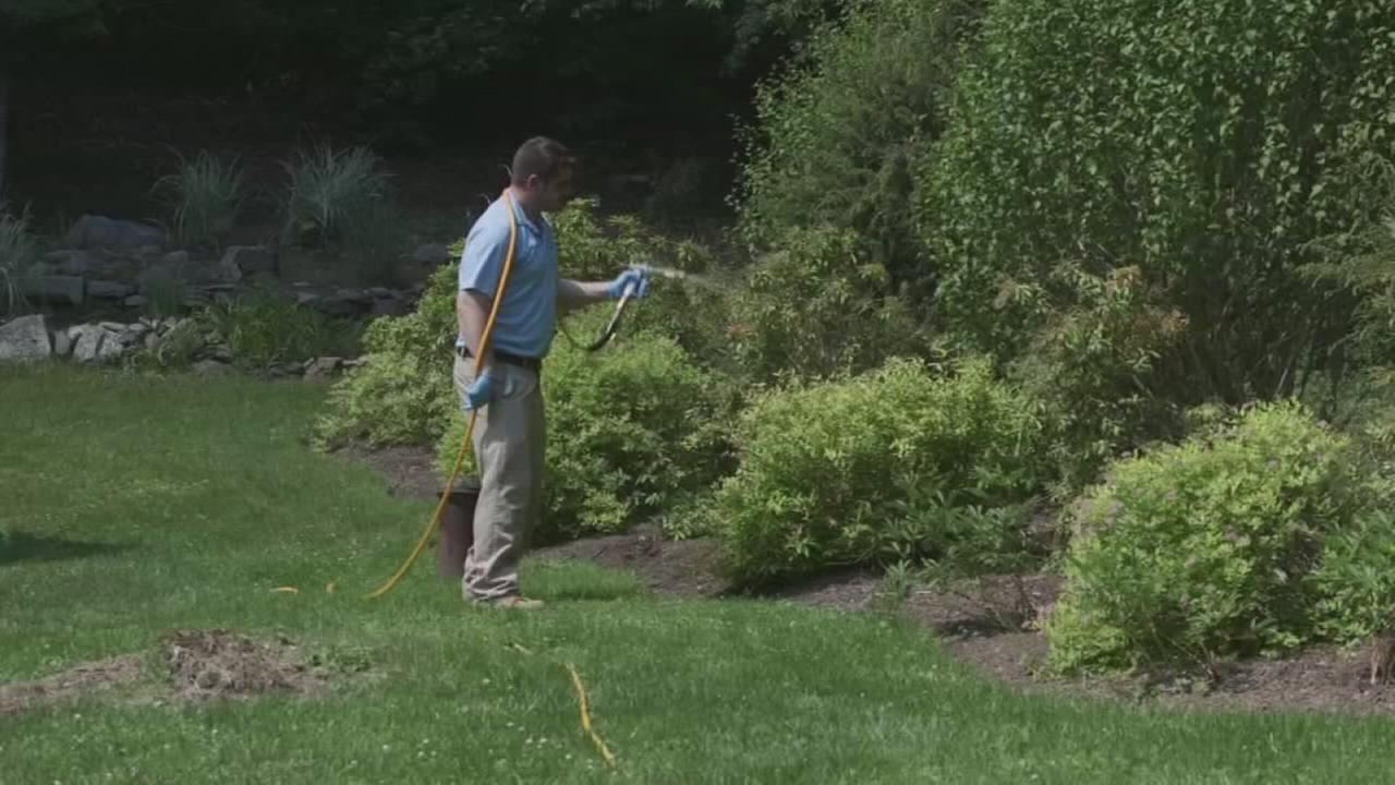 Consumer Reports: Tick-proof your yard
