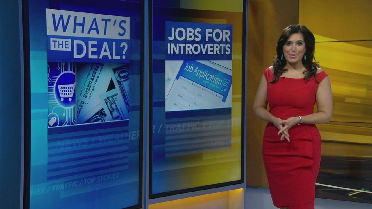 Whats the Deal: Job ideas for introverts