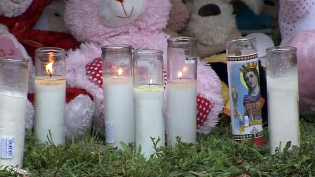 PHOTOS: Vigil for deadly carjacking victims