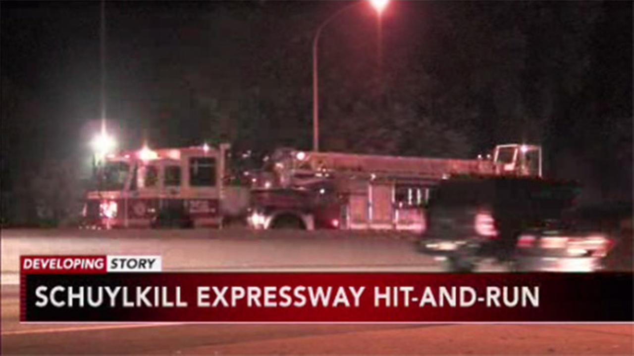 VIDEO: Man killed in hit-and-run on the Schuylkill Expressway