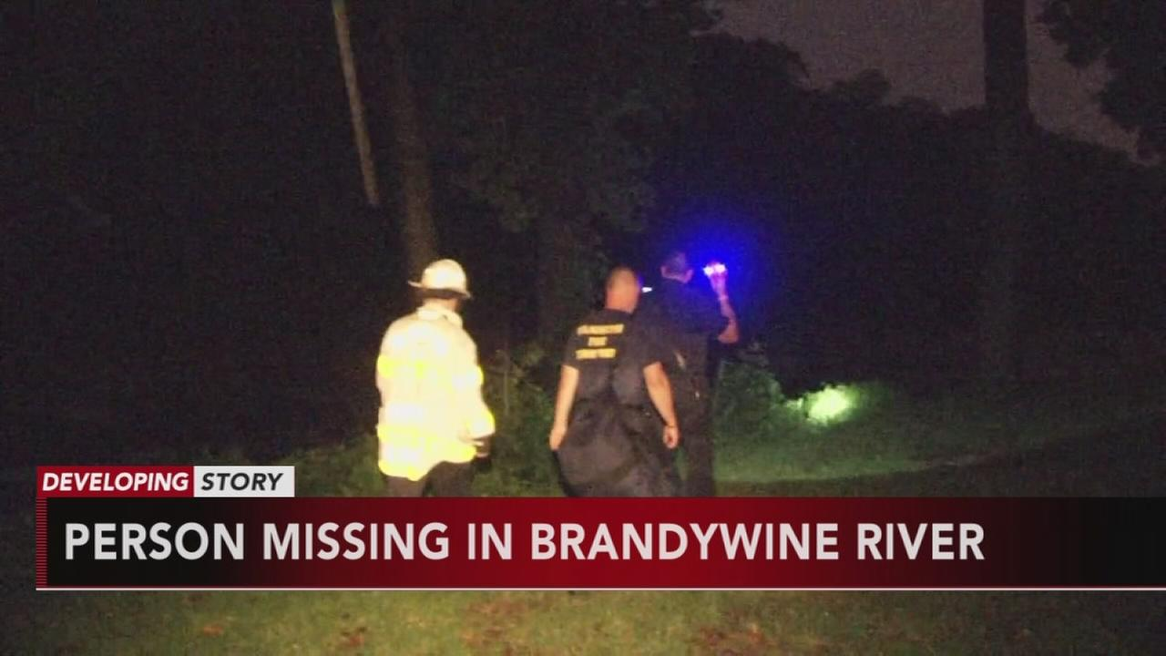 Person missing in Brandywine River