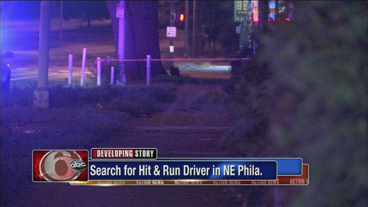 VIDEO: Pedestrian injured in hit-and-run accident on Roosevelt Boulevard