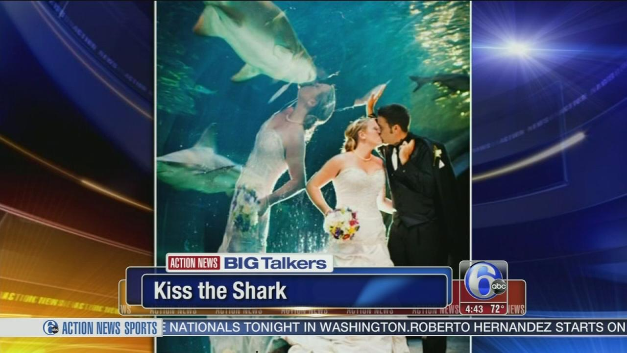 VIDEO: Bride appears to be kissing a shark!