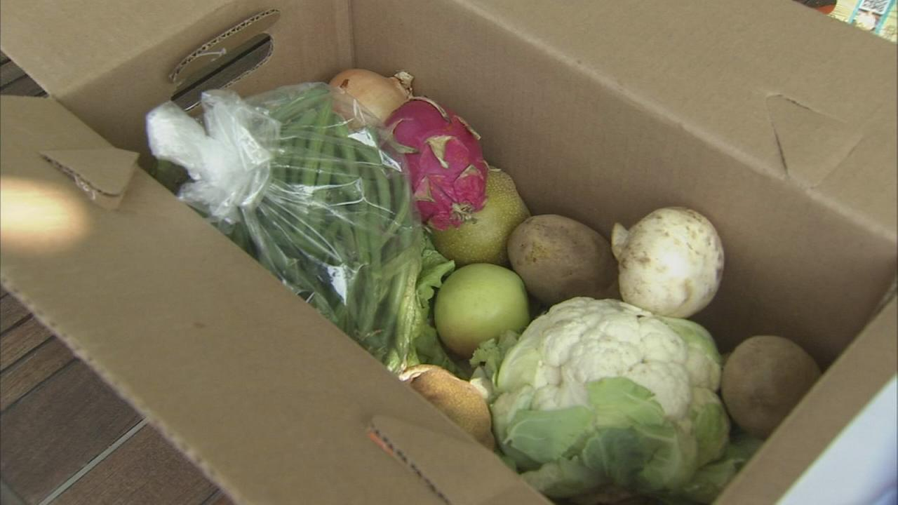 Produce delivery service fights food waste and hunger