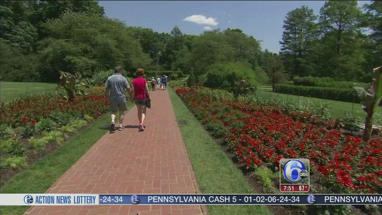 VIDEO: Longwood Gardens Summer Concert Series - 6abc Loves the Arts