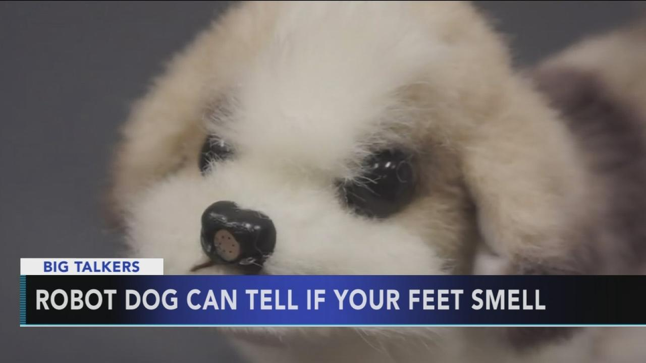 Robot dog in Japan can tell if your feet smell
