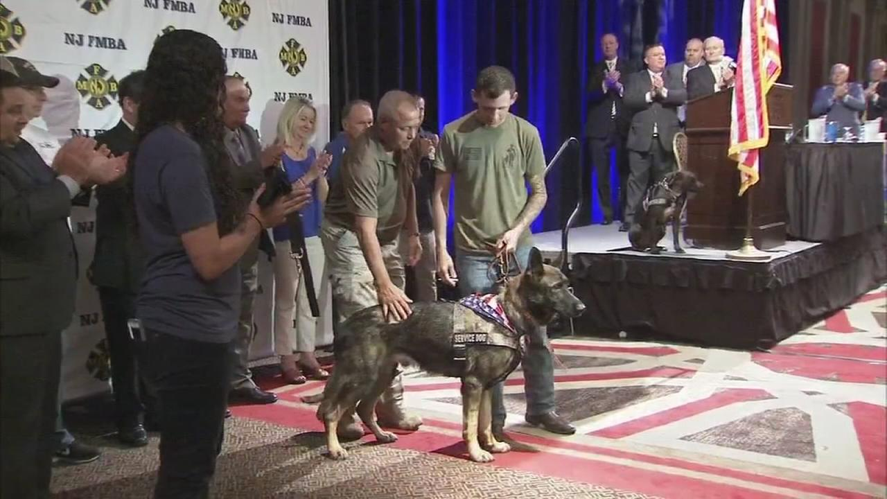 VIDEO: Service K9 awarded to veteran