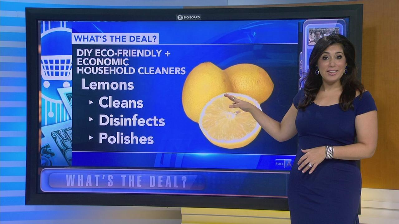 Whats the Deal: Eco-friendly and inexpensive household cleaners