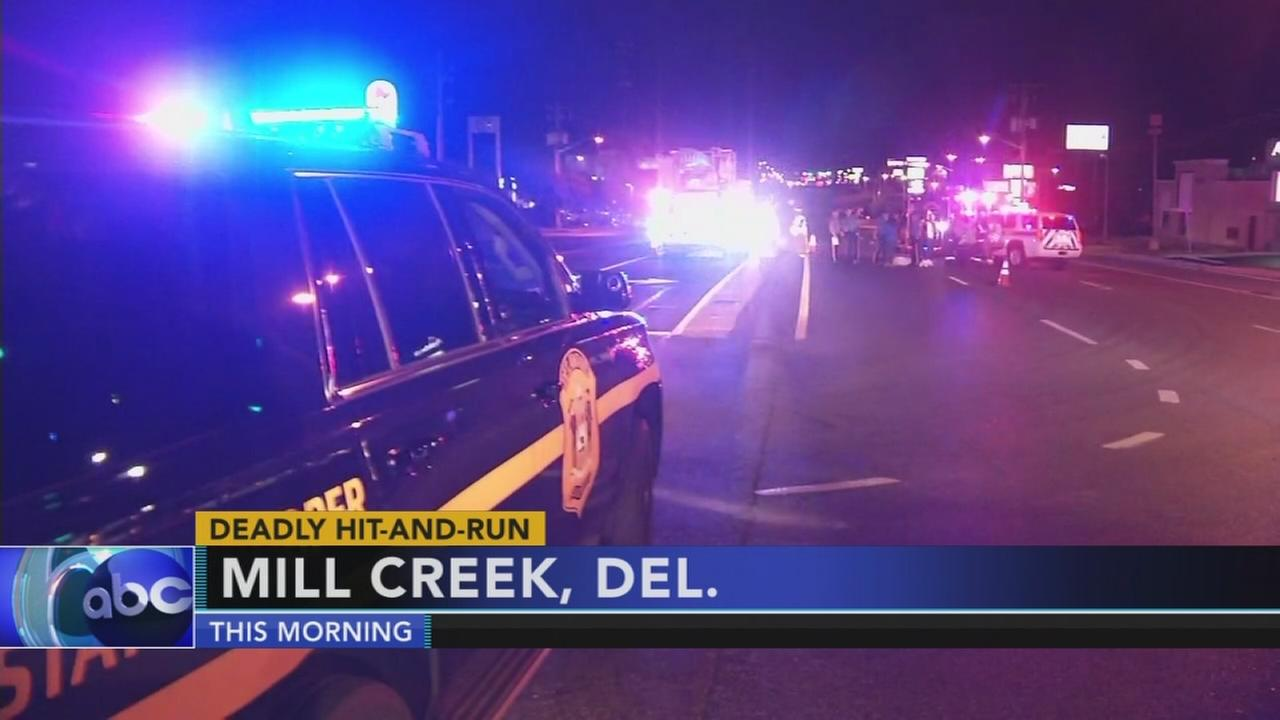 Police investigate fatal hit and run in Mill Creek