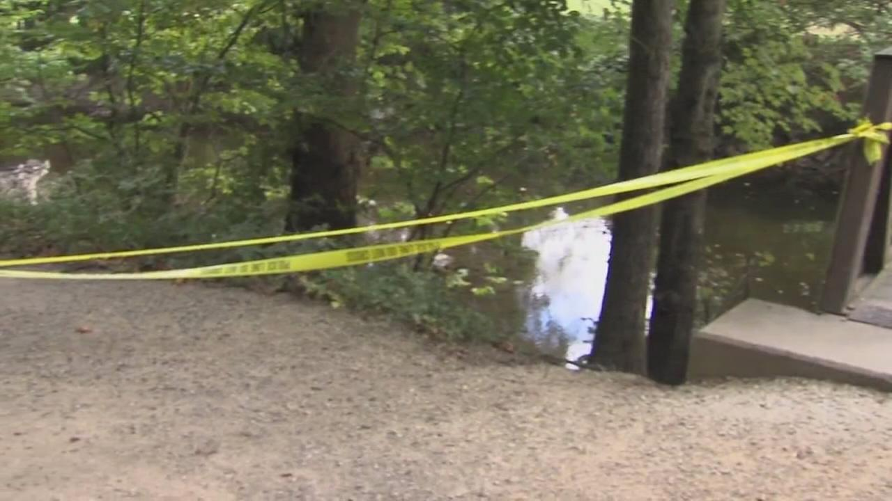 Man dies in fall at Lorimer Park: Walter Perez reports on Action News at 11 p.m., September 30, 2017